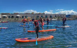 2 timers SUP-intro tur med bobler - <strong>Amager Strandpark</strong>
